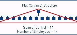 Flatten the organization