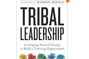 Book Review: Tribal Leadership by Dave Logan, John King, Halee Fischer-Wright
