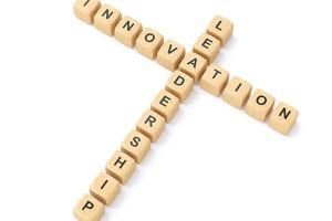 Leadership: Innovation
