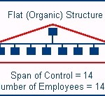 Flat organizations