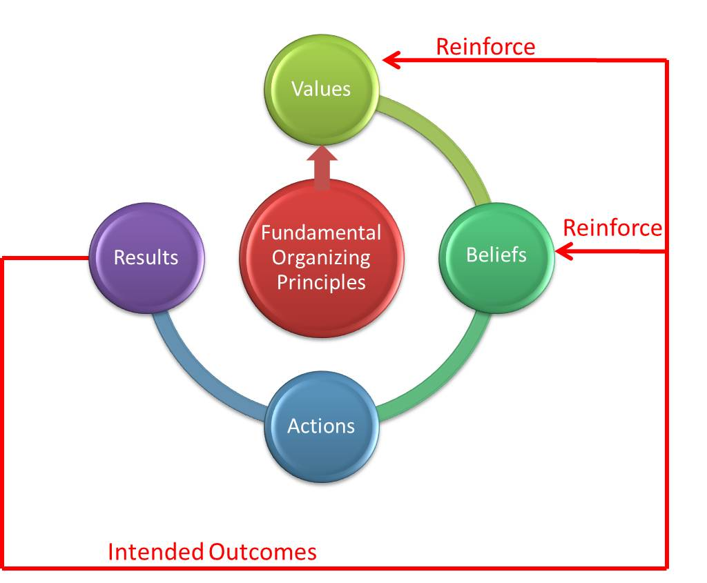 Reinforcing feedback in our FOP model